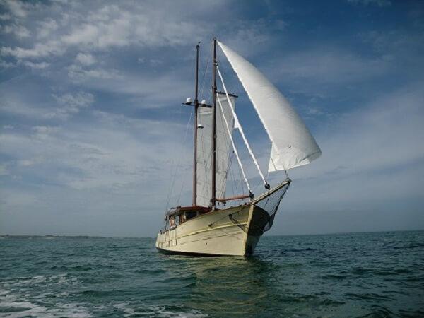 WOODEN SCHOONER - sailing 2