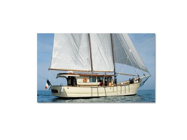WOODEN SCHOONER - sailing